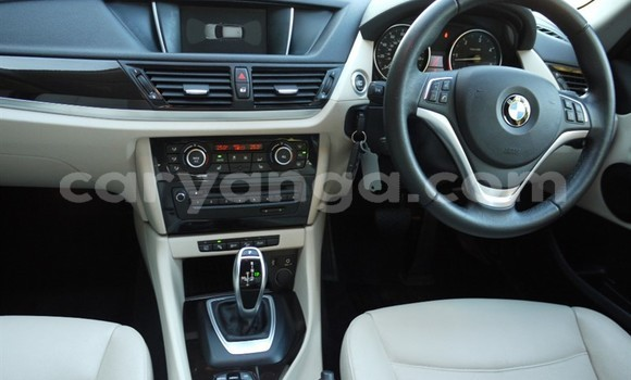 Buy Used BMW X1 Other Car in Dowa in Dowa