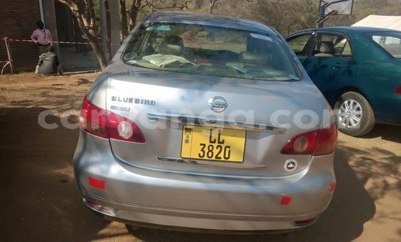 Buy Used Nissan Hardbody Black Car in Limbe in Malawi