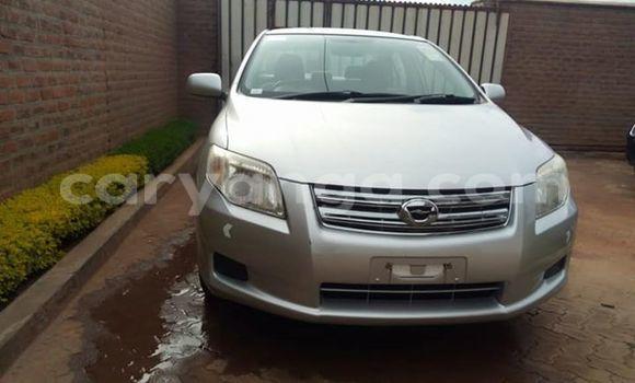 Buy Used Toyota Axio Silver Car in Lilongwe in Malawi