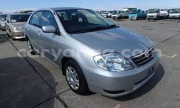 Buy Import Toyota Corolla Other Car in Blantyre in Malawi