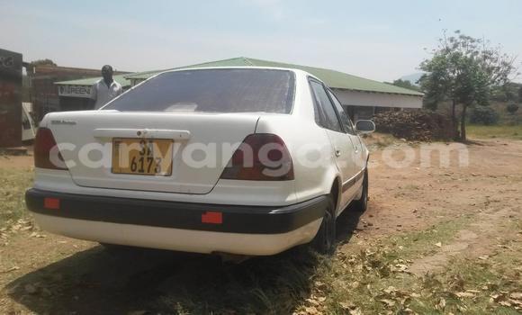 Buy Used Toyota Celica Black Car in Limbe in Malawi