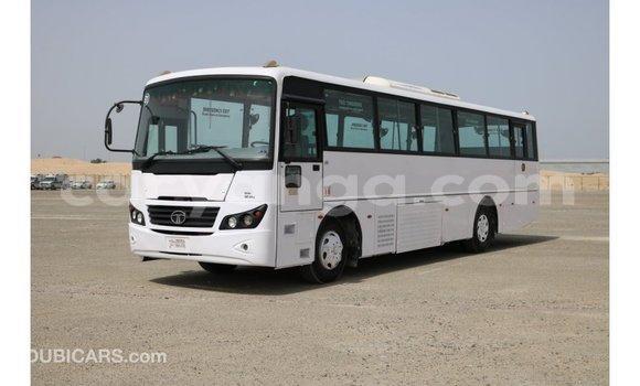 Buy Import Tata Xenon White Car in Import - Dubai in Malawi