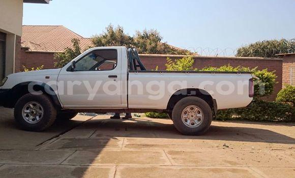 Buy Used Nissan Hardbody Black Car in Limbe in Malawi