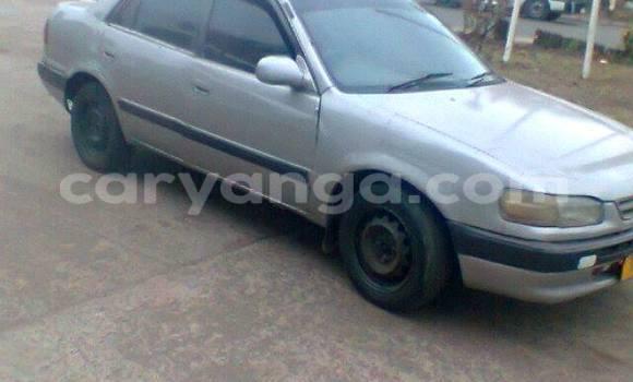 Buy Used Toyota Corolla Black Car in Limbe in Malawi