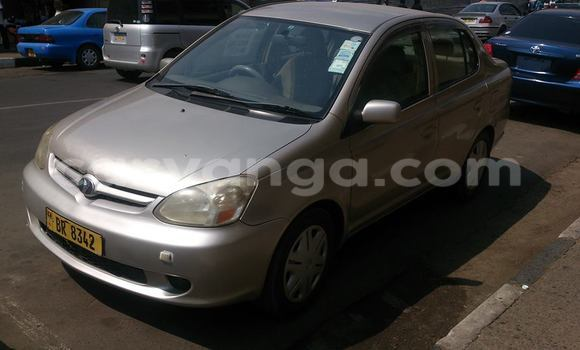 Buy Used Toyota Platz Black Car in Limbe in Malawi