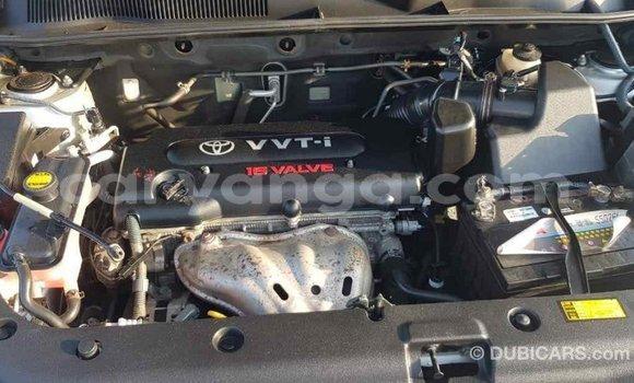 Buy Import Toyota RAV 4 Other Car in Import - Dubai in Malawi