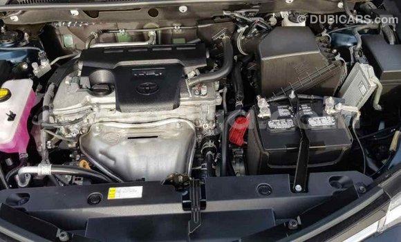 Buy Import Toyota RAV4 Black Car in Import - Dubai in Malawi