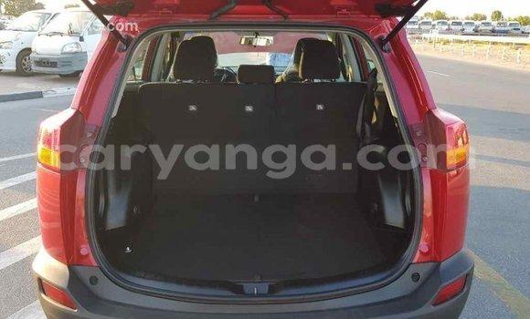 Buy Import Toyota RAV4 Red Car in Import - Dubai in Malawi