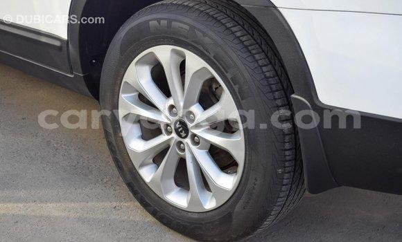 Buy Import Kia Sorento White Car in Import - Dubai in Malawi