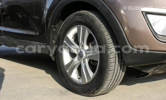 Buy Import Kia Sportage Brown Car in Import - Dubai in Malawi
