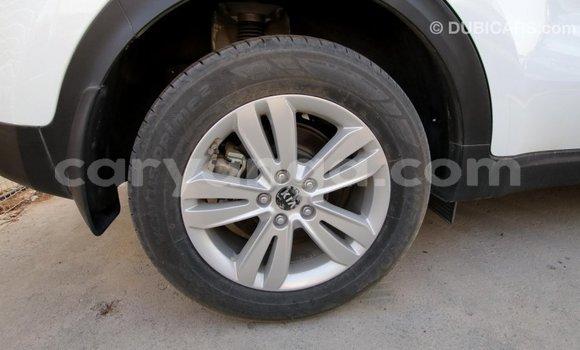 Buy Import Kia Sportage White Car in Import - Dubai in Malawi