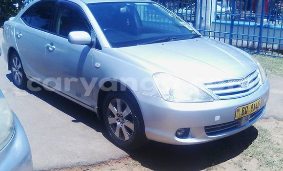 Buy Used Toyota Allex Silver Car in Limbe in Malawi
