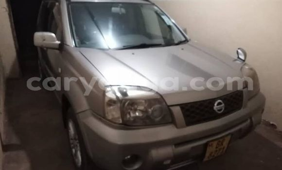 Buy Used Nissan X-Trail Silver Car in Lilongwe in Malawi