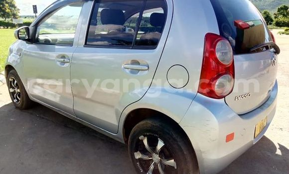 Buy Used Toyota Passo Silver Car in Kasungu in Malawi