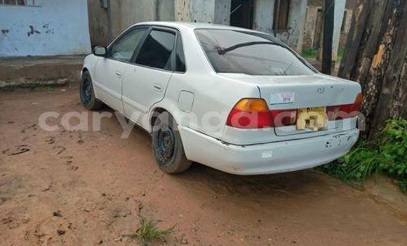 Buy Used Toyota Sprinter White Car in Kasungu in Malawi