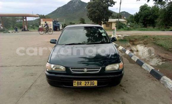 Buy Used Toyota Corolla Black Car in Kasungu in Malawi