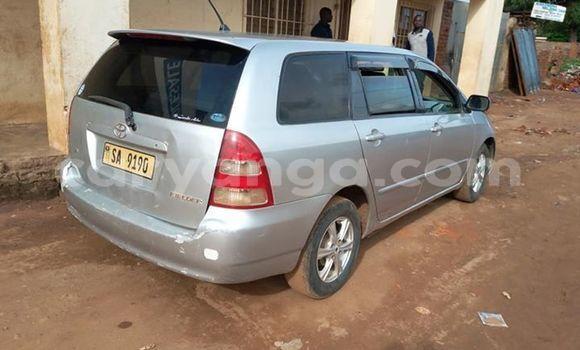 Buy Used Toyota Fielder Silver Car in Kasungu in Malawi