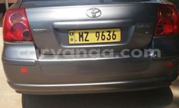 Buy Used Toyota Avensis Other Car in Limbe in Malawi