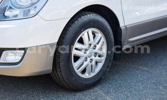 Buy Import Hyundai Chorus White Truck in Import - Dubai in Malawi