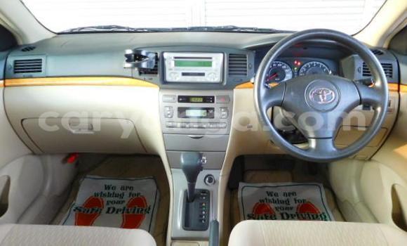 Buy New Toyota Runx Silver Car in Lilongwe in Malawi