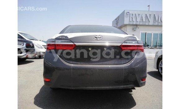 Buy Import Toyota Corolla Other Car in Import - Dubai in Malawi
