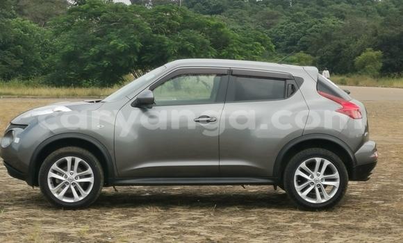 Buy Used Nissan Juke Other Car in Lilongwe in Malawi