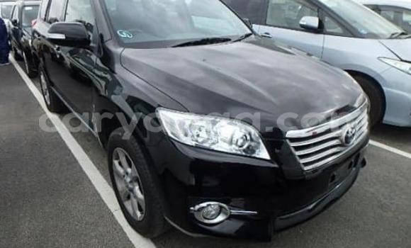 Buy Used Nissan Dualis Black Car in Blantyre in Malawi
