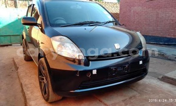 Buy Used Toyota Passo Black Car in Lilongwe in Malawi