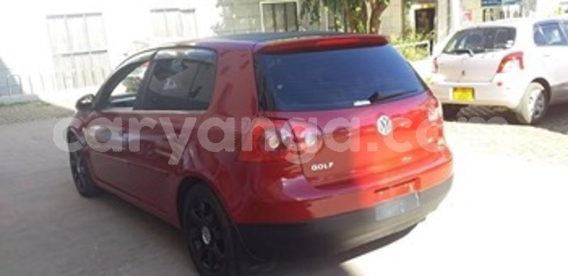 Big with watermark 60617121 2697854480285575 7804097362292375552 n