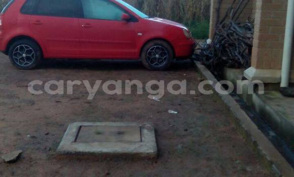 Buy Used Volkswagen Polo Red Car in Karonga in Malawi