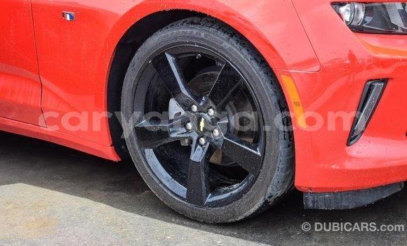 Buy Import Chevrolet Camaro Red Car in Import - Dubai in Malawi