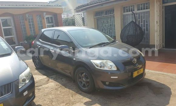 Buy Used Toyota Auris Black Car in Limbe in Malawi