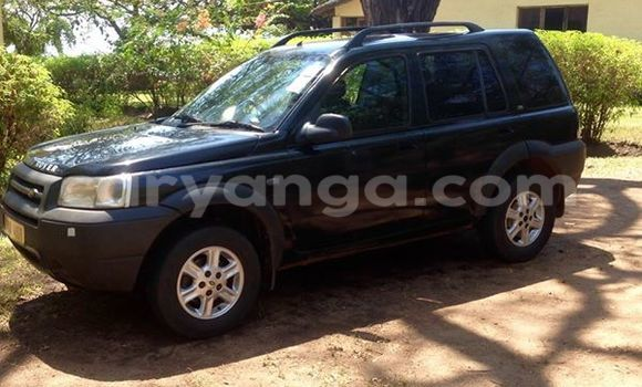 Buy Used Land Rover Freelander Black Car in Limbe in Malawi