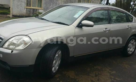 Buy Used Nissan Teana Silver Car in Limbe in Malawi
