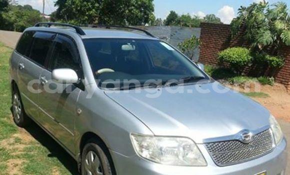 Buy Used Toyota Fielder Silver Car in Limbe in Malawi