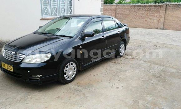 Buy Used Toyota Corolla Black Car in Limbe in Malawi