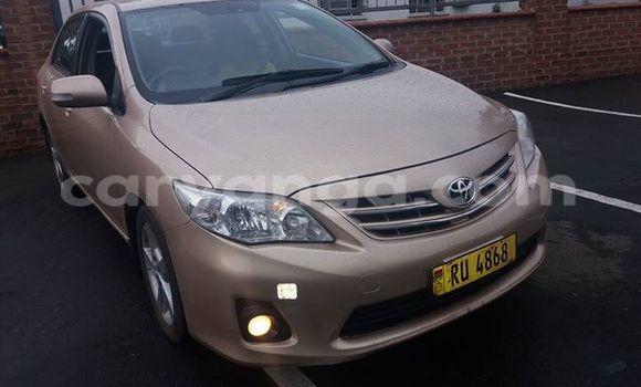 Buy Used Toyota Corolla Other Car in Limbe in Malawi