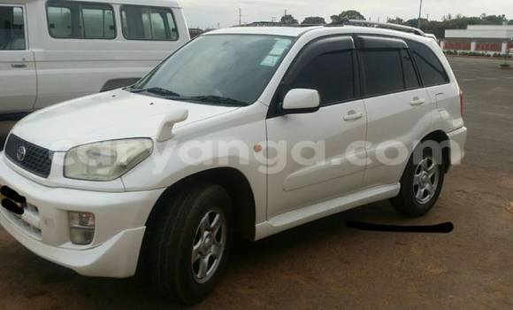 Buy Used Toyota RAV4 White Car in Limbe in Malawi