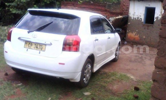 Buy Used Toyota Allex White Car in Limbe in Malawi