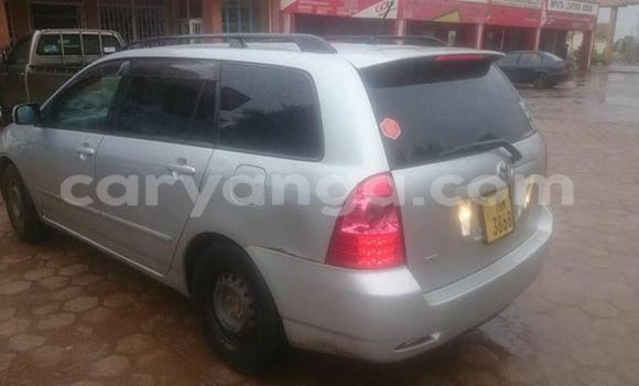Buy Used Toyota Fielder Silver Car in Limbe in Malawi