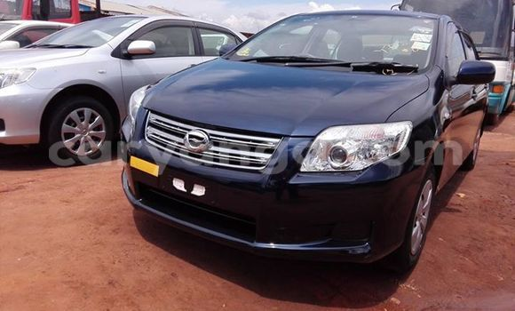 Buy Used Toyota Axio Black Car in Limbe in Malawi