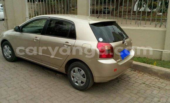 Buy Used Toyota Runx Other Car in Limbe in Malawi