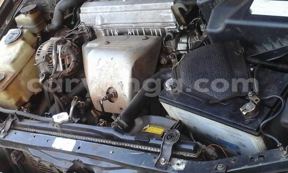 Buy Used Toyota Caldina Car in Limbe in Malawi
