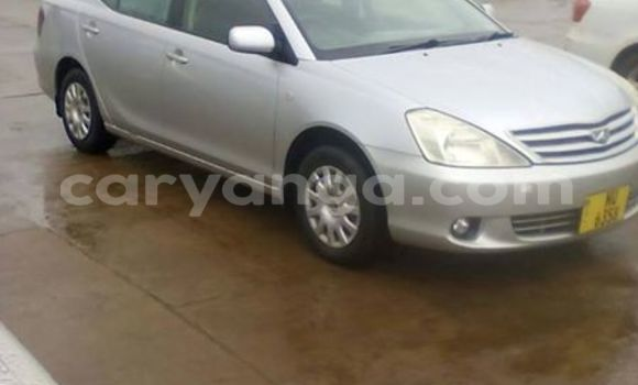 Buy Used Toyota Allex Silver Car in Limbe in Malawi