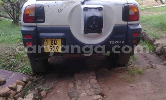Buy Used Toyota RAV4 White Car in Limbe in Malawi