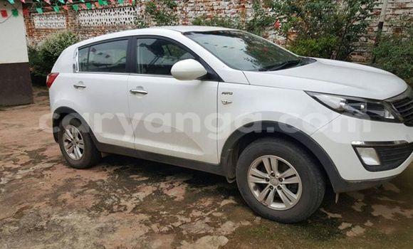 Buy Used Kia Sportage White Car in Limbe in Malawi