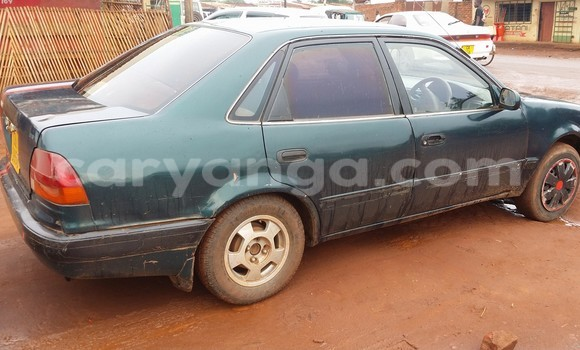 Buy Used Toyota Corolla Car in Limbe in Malawi