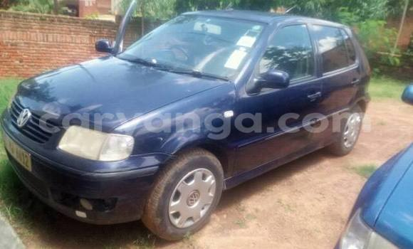 Buy Used Volkswagen Polo Blue Car in Limbe in Malawi