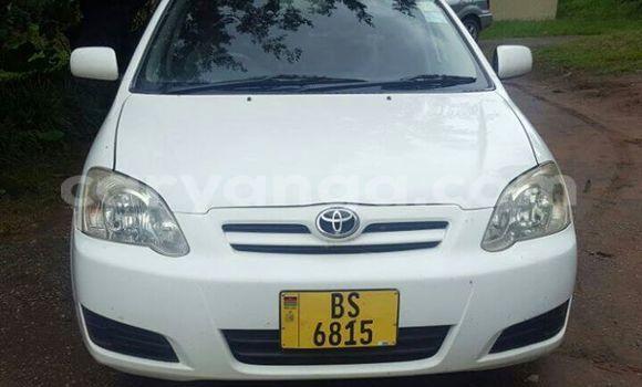 Buy Used Toyota Runx White Car in Limbe in Malawi