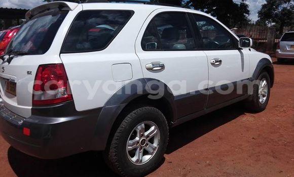 Buy Used Kia Sorento White Car in Limbe in Malawi